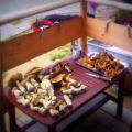 Agroturystyka Dom z Bali - Apartamenty Karpacz